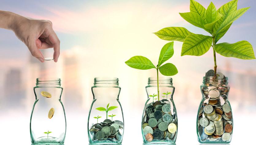 Budżet domowy pomaga w oszczędzaniu