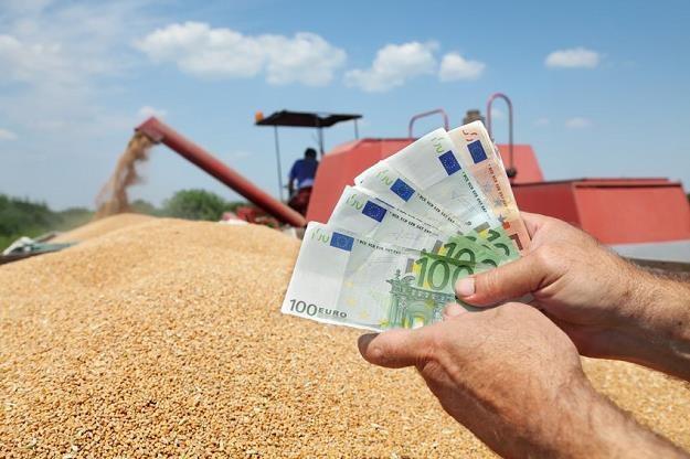 Budżet za kilka lat dopłaci do rolniczych polis grube miliony /©123RF/PICSEL