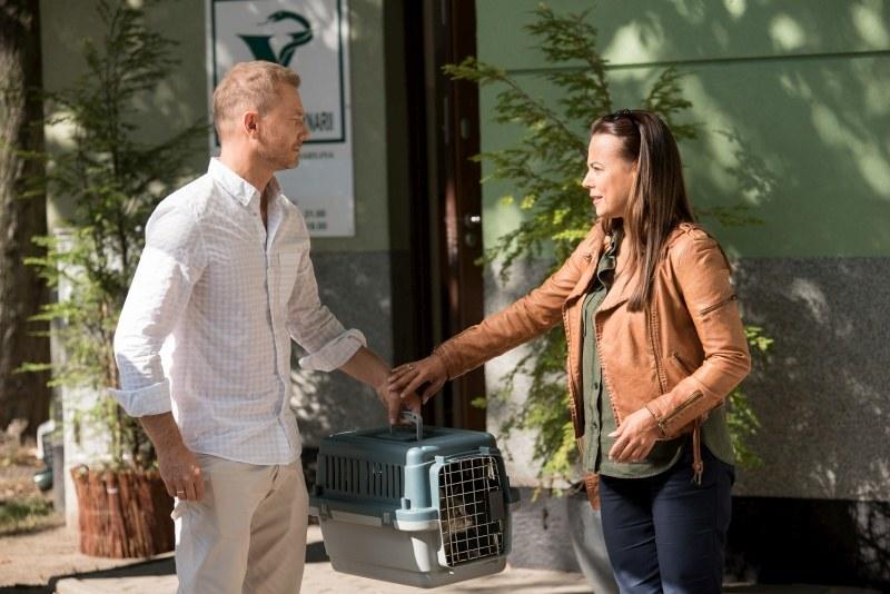 Budzyński zawiezie przyjaciółkę z kotem do weterynarza /Agencja W. Impact