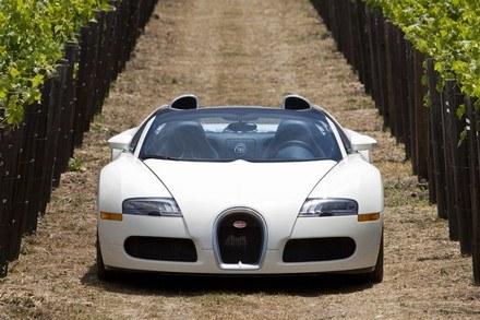 Bugatti veyron gran sport /