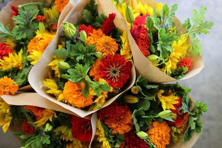 bukiet kwiatów układanie /© Photogenica