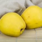 Bułeczki owocowo-budyniowe