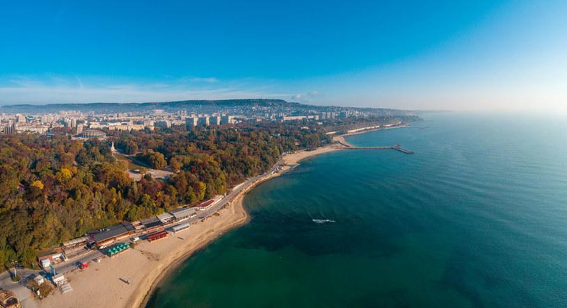 Bułgaria. Czarnomorskie wybrzeże w okolicach Warny /123RF/PICSEL
