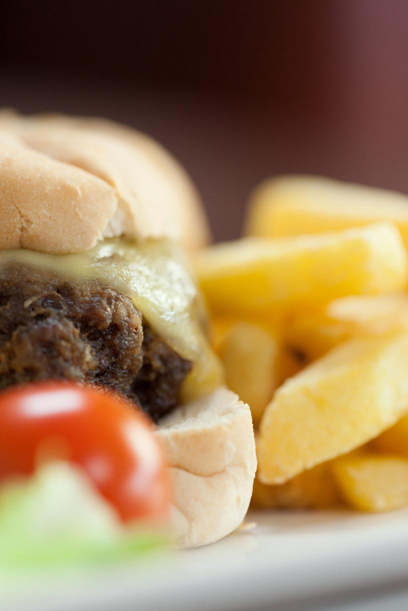 Burger i frytki /© Photogenica