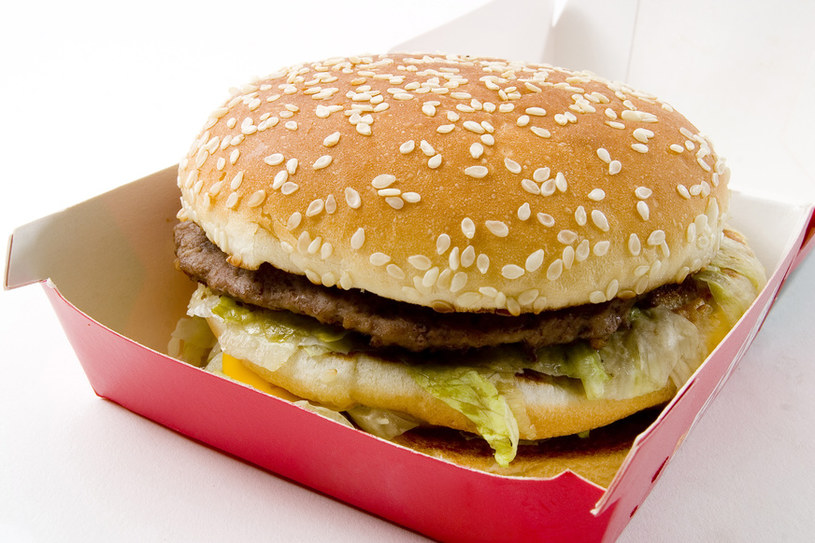 burger /© Photogenica