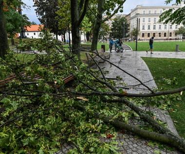 Burze i silny wiatr w Polsce. Ponad 2,7 tys. interwencji straży pożarnej
