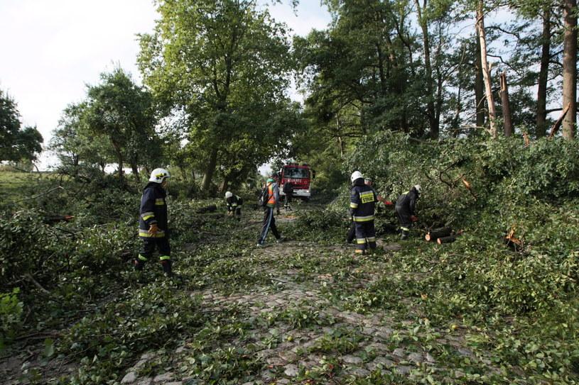 Burze spowodowały utrudnienia na kolei /Lech Muszyński /PAP