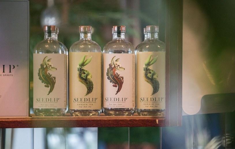 Butelka Seedlip kosztuje 28 funtów. Produkowane są dwie odmiany tego trunku /materiały prasowe