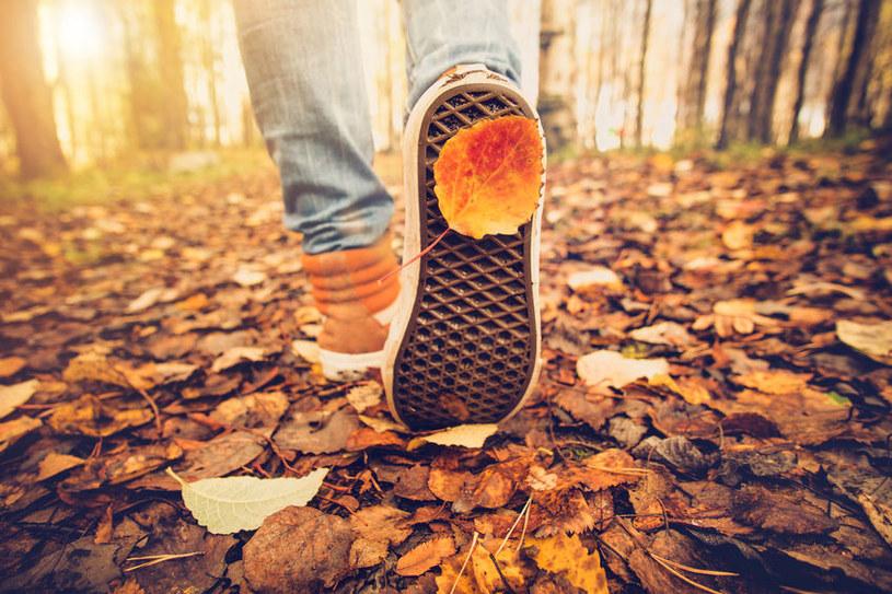 Buty jesienią /©123RF/PICSEL