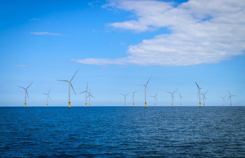 By ruszyć na dobre z pracami przygotowującymi porty pod obsługę procesu budowy morskich farm wiatrowych potrzebne są umowy, które zagwarantowałyby zwrot z inwestycji /123RF/PICSEL