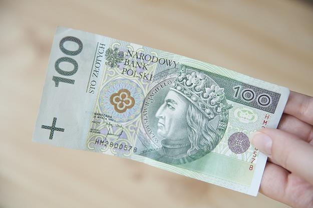 By skorzystać z oferty resortu finansów, wystarczy 100 zł /©123RF/PICSEL