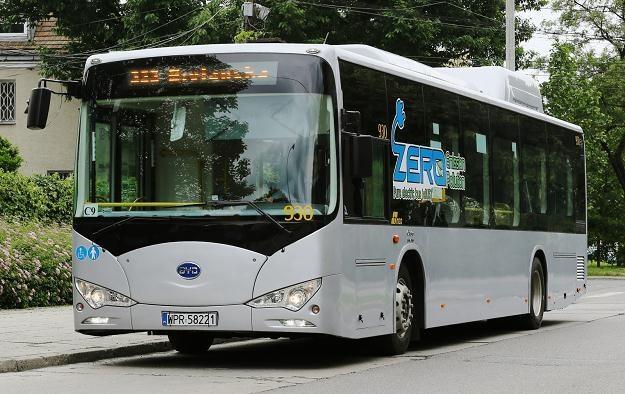 BYD K9 na testach w Warszawie /PAP