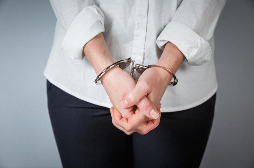 Była prezes banku została aresztowana pod zarzutem wyrządzenia szkody na ponad 22 mln zł /123RF/PICSEL