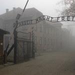 Była więźniarka Auschwitz do kolejnych pokoleń: Nie zawiedźcie nas! Nie pozwólcie na zniekształcenie pamięci