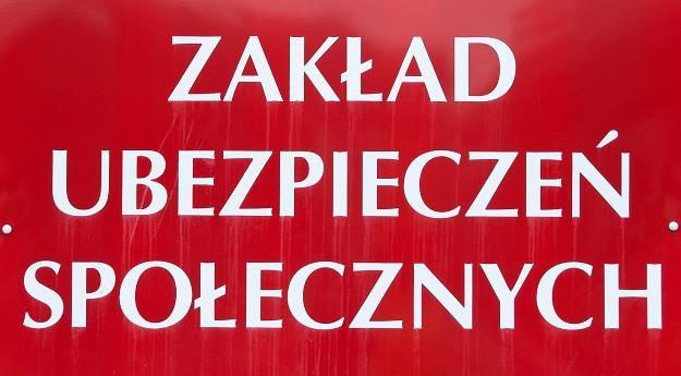 Byłe kierownictwo ZUS jest podejrzewane przez CBA. Fot. Łuaksz Grudniewski /Agencja SE/East News