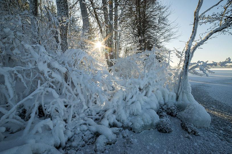 Prognozy: Front nad Polską. Ostrzeżenia przed zamieciami śnieżnymi i silnym wiatrem