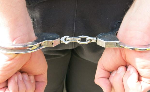 Były asystent Elżbiety Bieńkowskiej w rękach CBA. Wśród zatrzymanych także brat komisarz