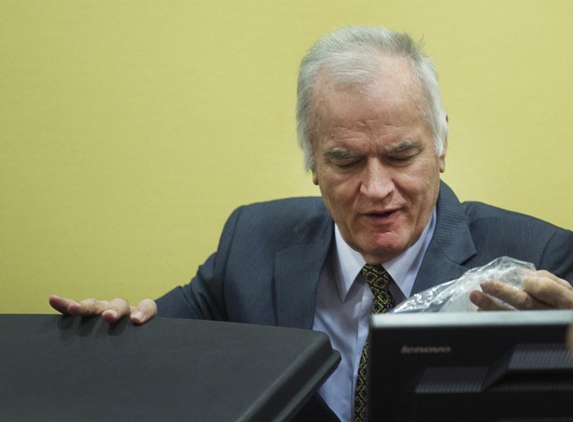 Były dowódca sił Serbów bośniackich Ratko Mladić jest oskarżony o ludobójstwo i zbrodnie wojenne /AFP
