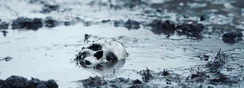 Całe państwo zostało zasłane szczątkami zamordowanych /        Fastnet Films /materiały prasowe