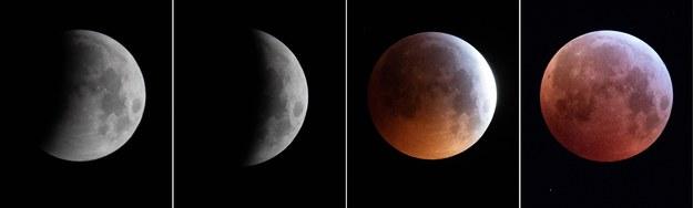 Całkowite zaćmienie Księżyca i superpełnia / APA / GEORG HOCHMUTH /PAP/EPA