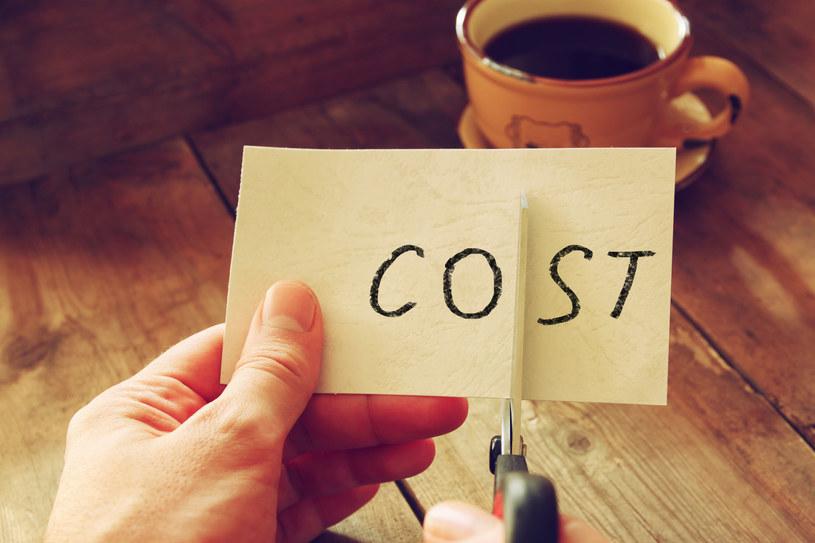 Całkowity koszt kredytu lub pożyczki określa Rzeczywista Roczna Stopa Oprocentowania /123RF/PICSEL