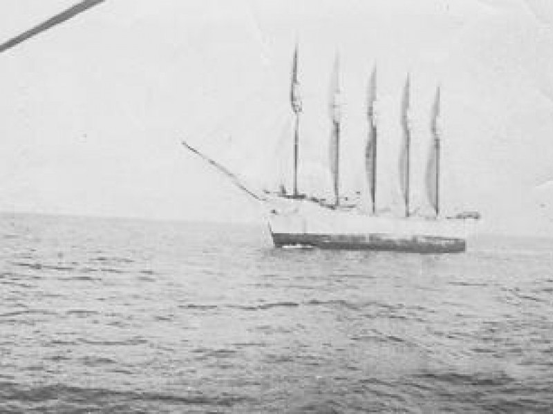 Carol A. Dirring - statek, na którym ocalał tylko kot /Wikipedia