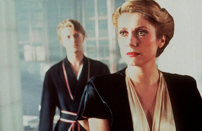 """Catherine Deneuve i Dawid Bowie w tle w filmie """"Zagadka nieśmiertelności"""" /materiały prasowe"""