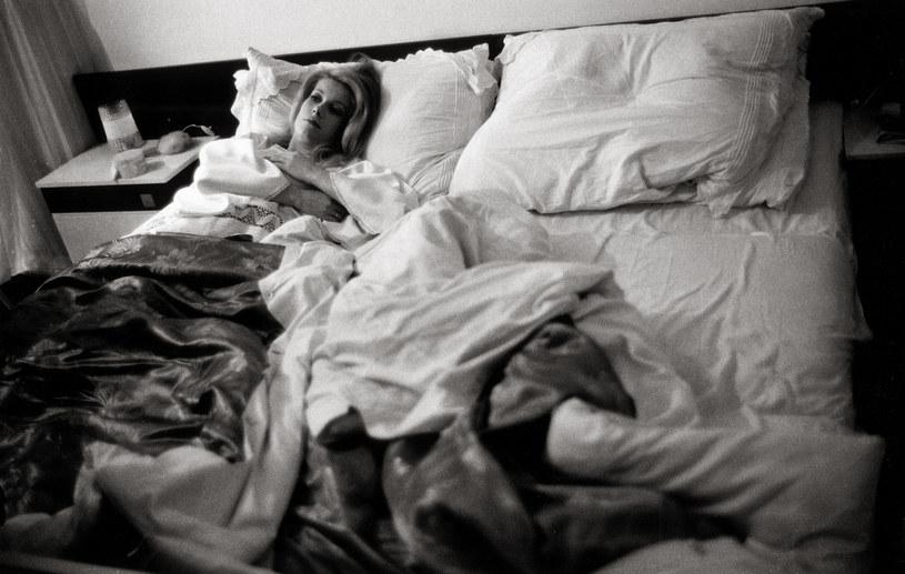 Catherine Deneuve w 1964 roku / Imagno /Getty Images