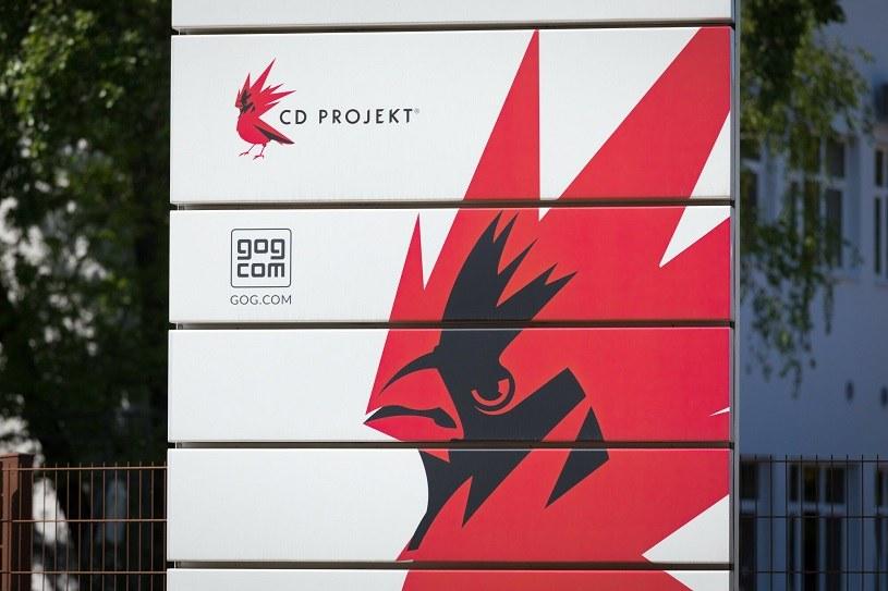 CD Projekt ostro zniżkował na GPW /Arkadiusz Ziółek /Agencja SE/East News