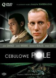 Cebulowe pole