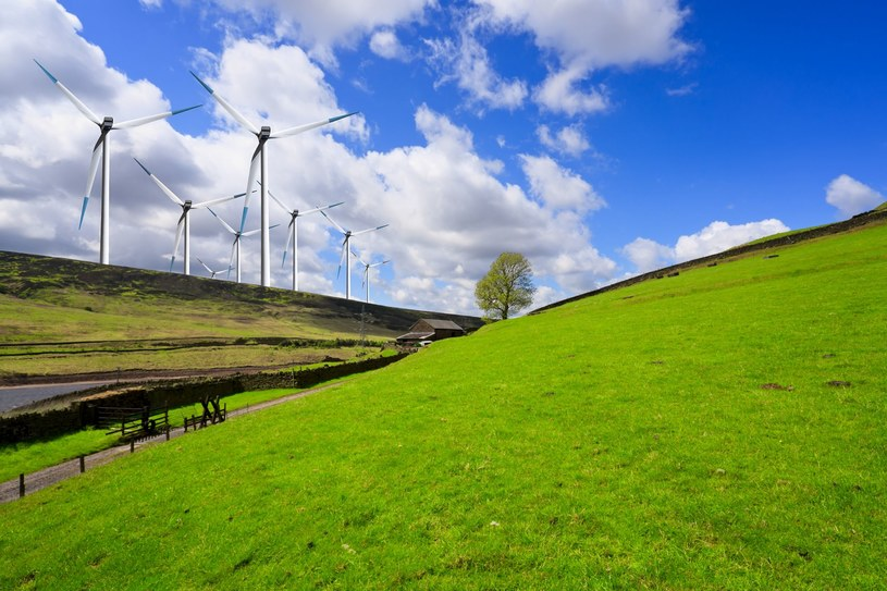 Cel 100 proc. zielonej energii do 2050 r. jest realny do osiągniecia? /123RF/PICSEL