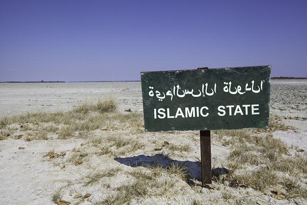 Celem organizacji jest ustanowienie państwa wyznaniowego opartego o zasady szariatu /©123RF/PICSEL