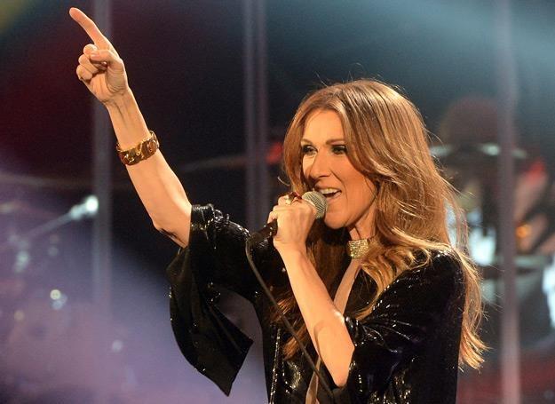 Celine Dion: Już nic nie muszę /arch. AFP
