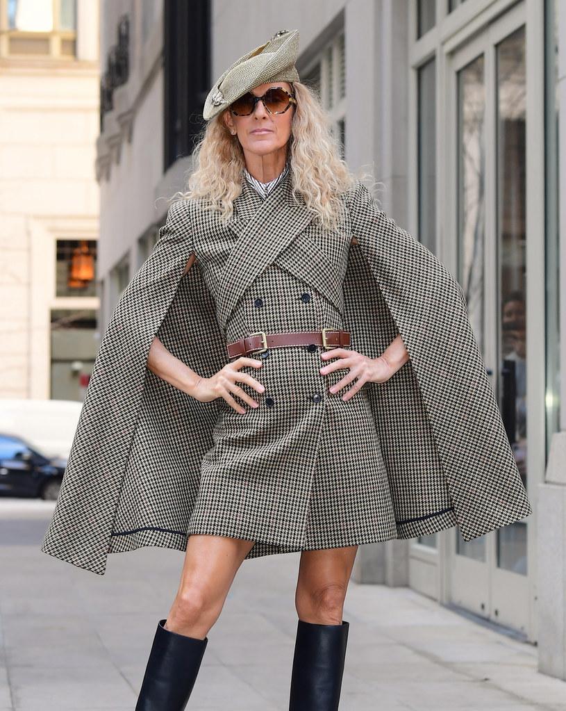 Celine Dion też pokochała kratę /Splash News /East News