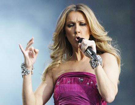 Celine Dion /arch. AFP