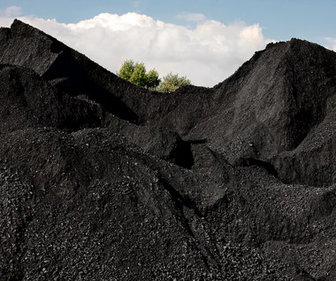 Cena tony węgla kamiennego w portach ARA wzrosła do 237 dolarów