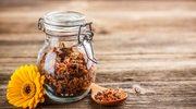 Cenny eliksir odżywczy: Pierzga pszczela