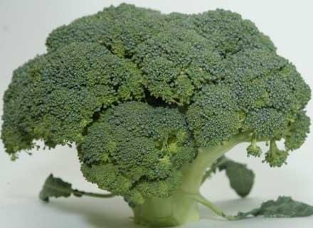 Cennym źródłem kwasu foliwego są zielone warzywa, fot. Paweł Boruta /MWMedia