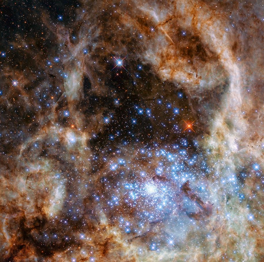 Centralny rejon Mgławicy Tarantula w Wielkim Obłoku Magellana, z R136 nieco w prawo i w dół od środka /NASA, ESA, P Crowther (University of Sheffield) /materiały prasowe