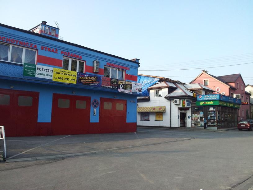 Centrum Ogrodzieńca /Ziemowit Szczerek /INTERIA.PL
