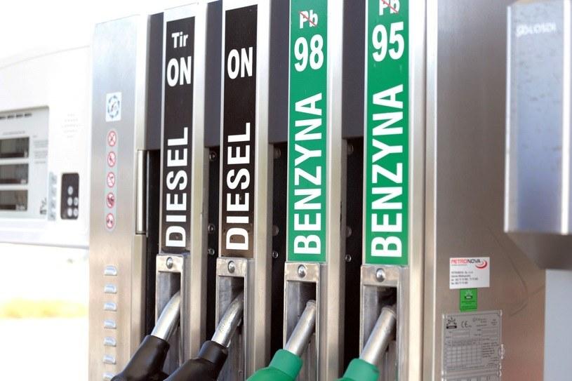 Ceny benzyny powinny spadać, ale diesla będą rosły /Piotr Jędzura /Reporter