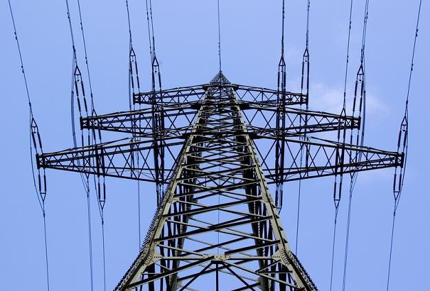 Ceny energii w kontraktach terminowych na przyszły rok biją kolejne rekordy /© Panthermedia