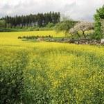 Ceny gruntów nadal rosną