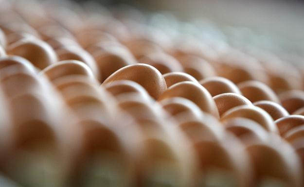 Ceny jajek znacznie wzrosły /AFP