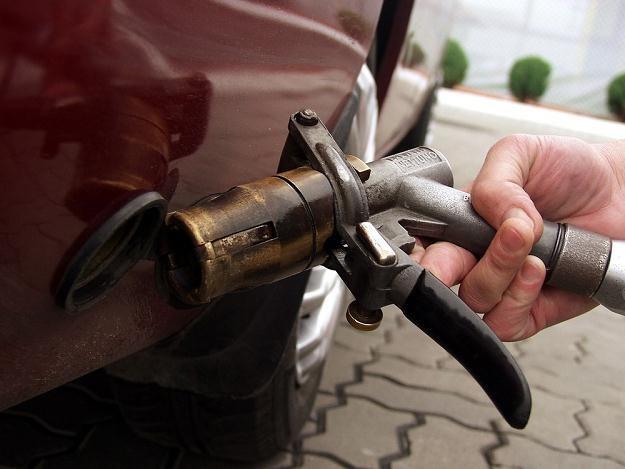 Ceny LPG mogą w 2013 r. spaść o kilkanaście groszy na litrze, fot. Norma /Reporter