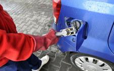 Ceny LPG w dół. A innych paliw?
