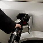 Ceny oleju napędowego wyższe niż benzyny!