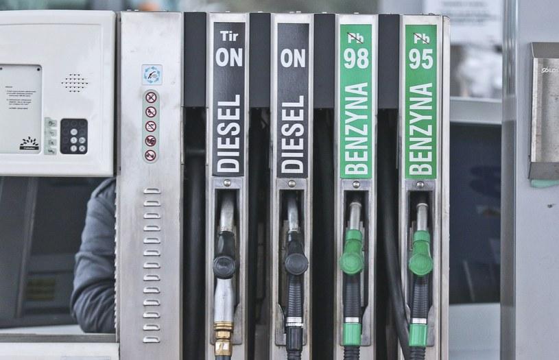 Ceny paliw chwilowo będą stabilne /Piotr Jędzura /Reporter