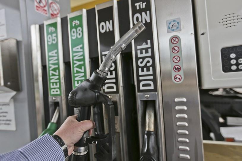 Ceny paliw na razie będą stabilne /Piotr Jędzura /Reporter