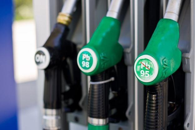 Ceny paliw systematycznie spadają / Fot: Paweł Jaskółka /Reporter